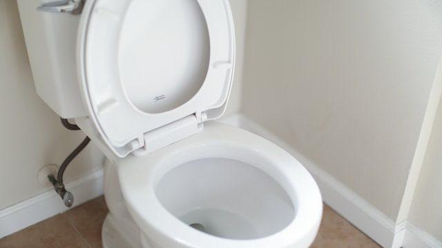 トイレ便器の中